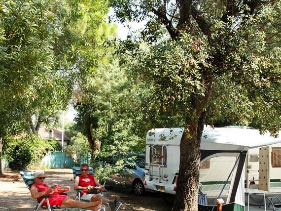 Camping Camping La Pinède Cavalaire-sur-Mer